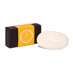 Soap Single Box Orange -...